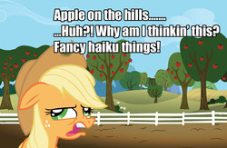 Size: 1219x797 | Tagged: applejack, derp, fancy, haiku, random, safe