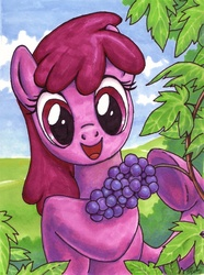 Size: 604x811 | Tagged: artist:choedan-kal, berry punch, grapes, safe, traditional art