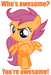 Size: 900x1325 | Tagged: safe, scootaloo, pegasus, pony, awesome, caption, female, filly, image macro, looking at you, pointing, reaction image, simple background, solo, transparent background, who's awesome? you're awesome