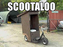 Size: 450x338 | Tagged: barely pony related, image macro, no pony, photo, pun, safe, scootaloo, visual pun
