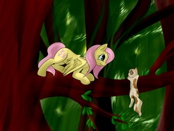 Size: 2560x1920 | Tagged: safe, artist:weird--fish, fluttershy, cat, forest, tree