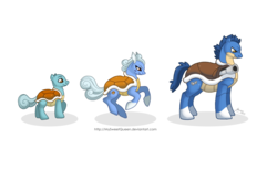 Size: 1280x789 | Tagged: safe, artist:almairis, blastoise, squirtle, wartortle, crossover, evolution chart, family, female, foal, male, mare, pokémon, ponymon, shell, simple background, socks (coat marking), stallion, transparent background, trio