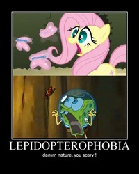 Size: 600x750 | Tagged: safe, fluttershy, butterfly, family guy, fear, lepidopterophobia, meme, motivational poster, motivator, nature, scared, scary, spongebob squarepants, wormy
