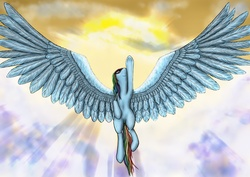 Size: 3508x2480 | Tagged: safe, artist:alcor, rainbow dash, armpits, impossibly large wings, wings