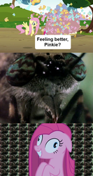 Size: 640x1202 | Tagged: butterfly, contemplating insanity, fluttershy, insanity face, party of one, pinkamena diane pie, pinkie pie, safe, scary, spongebob squarepants, too many pinkie pies, wormy