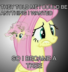 Size: 543x571 | Tagged: fluttershy, fluttertree, meme, safe, tree
