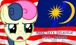 Size: 1000x600 | Tagged: bon bon, cross-linguistic pun, flag, lol, malay, malaysia, name translation, patriotic, pun, safe, sweetie drops, text
