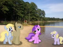 Size: 2592x1944 | Tagged: safe, artist:tokkazutara1164, amethyst star, derpy hooves, dinky hooves, doctor whooves, sparkler, time turner, pegasus, pony, barrier, beach, doctorderpy, female, irl, male, mare, peer, photo, ponies in real life, shipping, straight, tree, vector