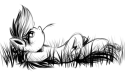 Size: 700x409 | Tagged: safe, artist:xioade, rainbow dash, black and white, grass, grayscale, monochrome, on back, resting, solo