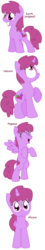 Size: 848x4664 | Tagged: alicorn, alicornified, all pony races, artist:pupster0071, berrycorn, berry punch, berryshine, female, juicy fruit, mare, pegasus, pony, race swap, safe, unicorn