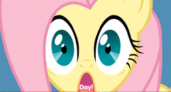 Size: 1328x716 | Tagged: artist:misterdavey, close-up, eating, eating captions, fluttershy, funny, open mouth, safe, screaming, shocked, smile hd, solo, wat, wide eyes