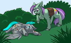 Size: 1000x607 | Tagged: safe, artist:foxenawolf, oc, oc only, oc:lavender dreams, oc:whirring cogs, pegasus, pony, unicorn, fanfic:change of life, broken horn, change of life, commission, fanfic art, injured, outdoors, unshorn fetlocks