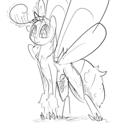 Size: 960x960 | Tagged: source needed, safe, artist:whydomenhavenipples, oc, oc only, mothpony, original species, monochrome, moth pony general, simple background, solo, white background