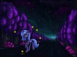 Size: 1600x1192 | Tagged: dead source, safe, artist:polkin, princess luna, alicorn, firefly (insect), pony, female, forest, glow, night, night sky, s1 luna, sky, solo, starry sky, stars, tree