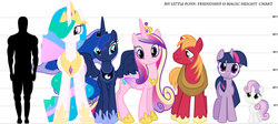 Size: 1127x504 | Tagged: safe, artist:furryfan87243, big macintosh, princess cadance, princess celestia, princess luna, sweetie belle, twilight sparkle, earth pony, human, pony, unicorn, height difference, height meter, line-up, male, size chart, size comparison, stallion, text, unicorn twilight