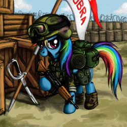Size: 1080x1080 | Tagged: ak-47, artist:myminiatureequine, assault rifle, backpack, banner, crate, goggles, gun, helmet, looking at you, military, rainbow dash, rifle, safe, soldier, solo, sword, trench, weapon