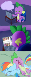 Size: 599x1500 | Tagged: artist:girgrunny, butthurt, rainbow dash, safe, spike, spike drama, spike's laptop