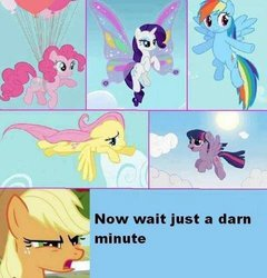 Size: 480x500 | Tagged: artist needed, safe, edit, edited screencap, screencap, applejack, fluttershy, pinkie pie, rainbow dash, rarity, twilight sparkle, alicorn, earth pony, pegasus, pony, sonic rainboom (episode), caption, comic, female, mane six, mare, text, twilight sparkle (alicorn)