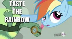 Size: 622x338 | Tagged: safe, rainbow dash, tank, affection, kissing, licking, pun