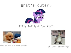 Size: 2048x1536 | Tagged: safe, twilight sparkle, dog, duck, golden retriever, bronybait, cute, duckling, filly, irl dog, meta, puppy, question