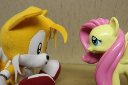"Size: 800x533 | Tagged: artist needed, source needed, safe, fluttershy, crossover, irl, miles ""tails"" prower, photo, sonic the hedgehog (series), toy"