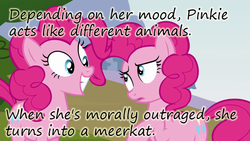 Size: 640x360   Tagged: safe, edit, edited screencap, screencap, pinkie pie, earth pony, pony, too many pinkie pies, clone, cropped, duo, female, insane pony thread, mare, multeity, pinkie clone, smiling, too much pink energy is dangerous