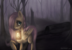 Size: 2961x2052 | Tagged: safe, artist:ouyrof, fluttershy, dark, female, forest, glow, lantern, mouth hold, solo