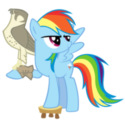 Size: 2333x2333 | Tagged: safe, artist:breadking, rainbow dash, falcon, pegasus, pony, may the best pet win, falconry, female, peregrine falcon, simple background, solo, stool, transparent background, vector