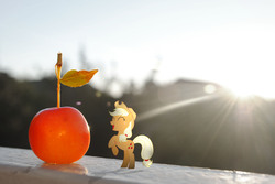 Size: 3872x2592   Tagged: safe, artist:utterlyludicrous, applejack, apple, appletini, lens flare, ponies in real life, small, solo, vector