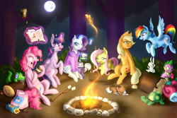 Size: 900x600 | Tagged: safe, artist:tzelly-el, angel bunny, applejack, fluttershy, gummy, opalescence, owlowiscious, peewee, pinkie pie, rainbow dash, rarity, spike, tank, twilight sparkle, winona, alicorn, pony, bathrobe, book, campfire, camping, clothes, female, gem, hair curlers, mane seven, mane six, mare, marshmallow, moon, robe, s'mores, toasted marshmallow, toasting, twilight sparkle (alicorn)