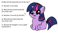 Size: 1194x668 | Tagged: safe, twilight sparkle, koala, filly twilight sparkle, filly twilight telling an offensive joke, joke, meme, solo