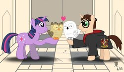 Size: 1024x597   Tagged: safe, artist:jazzytyfighter, owlowiscious, twilight sparkle, owl, harry potter, heart, hedwig, ponified
