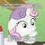 Size: 495x496 | Tagged: safe, edit, edited screencap, screencap, sweetie belle, trixie, ponyville confidential, image macro, meme, meta, ozzie, pun, question, rule 63, solo, sudden clarity sweetie belle, text, tristan