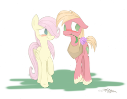 Size: 1726x1341 | Tagged: dead source, safe, artist:estrill, part of a set, big macintosh, fluttershy, earth pony, pegasus, pony, 2013, blushing, colored sketch, female, finished, floppy ears, flower, flower in mouth, fluttermac, looking away, male, mouth hold, shipping, signature, simple background, sketch, stallion, straight, white background
