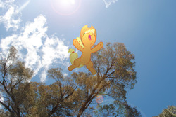 Size: 3872x2592 | Tagged: safe, artist:utterlyludicrous, applejack, falling, female, lens flare, ponies in real life, solo, sun, tree, vector