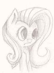 Size: 674x915 | Tagged: artist:suplolnope, fluttershy, monochrome, safe, sketch, solo