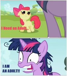 Size: 636x720 | Tagged: apple bloom, dragonball z abridged, i am an adult, implied foalcon, i need an adult, lesson zero, parody, safe, screencap, team four star, twilight is a foal fiddler, twilight snapple, twilight sparkle