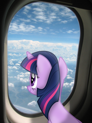 Size: 800x1067 | Tagged: safe, twilight sparkle, irl, photo, plane, ponies in real life, sky, solo, vector, window