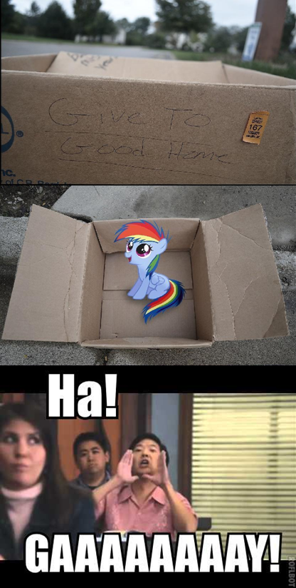 390526 Community Dashie Meme Evil People Finding Dash Meme