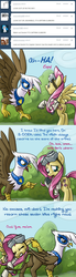 Size: 640x2334   Tagged: safe, artist:giantmosquito, fluttershy, gilda, griffon, ask, ask-dr-adorable, dr adorable, tumblr