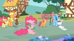 Size: 1054x592 | Tagged: safe, screencap, apple bloom, applejack, gummy, opalescence, pinkie pie, rainbow dash, scootaloo, tank, winona, earth pony, pony, just for sidekicks, hug, opaltank