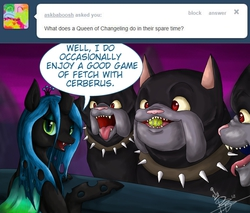 Size: 900x768   Tagged: safe, artist:chiibe, cerberus (character), queen chrysalis, cerberus, changeling, changeling queen, dog, ask the changeling queen, ask, collar, dog collar, fetch, multiple heads, spiked collar, tennis ball, three heads, tumblr