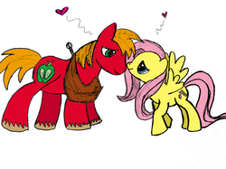 Size: 2592x1936 | Tagged: safe, artist:icypinkbubbles, big macintosh, fluttershy, earth pony, pony, colored, fluttermac, male, shipping, sketch, stallion, straight