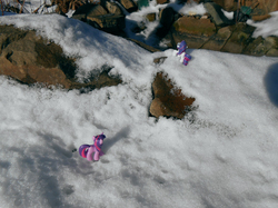 Size: 1383x1037 | Tagged: artist:synch-anon, irl, photo, rarity, safe, snow, toy, twilight sparkle, winter