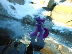 Size: 4608x3456 | Tagged: artist:synch-anon, ice, safe, toy, twilight sparkle, winter