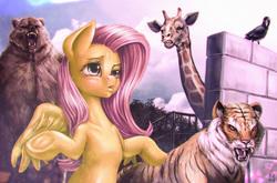 Size: 2480x1632   Tagged: safe, artist:mrs1989, fluttershy, bear, big cat, bird, giraffe, pony, raven (bird), tiger, bipedal, chromatic aberration, pure unfiltered evil, shrug, underhoof, zoo