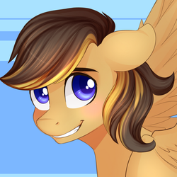 Size: 900x900   Tagged: safe, oc, oc only, pegasus, pony, floppy ears, portrait, smiling, solo