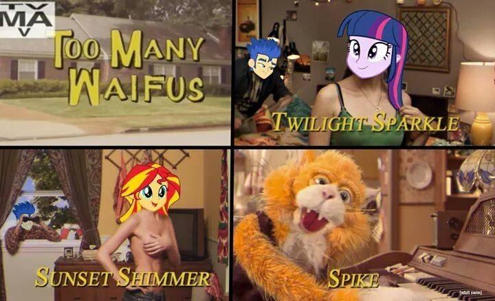 full 764314 adult swim, equestria girls, exploitable meme, flash sentry