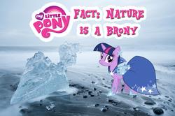 Size: 885x586   Tagged: safe, twilight sparkle, ice pony, author:flyget, clothes, dress, gala dress, iceland, my little pony logo, nature, nature is a brony, photo