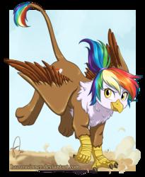 Size: 751x916   Tagged: safe, artist:hazurasinner, oc, oc only, oc:rainbow feather, griffon, hippogriff, cutie mark, dust, interspecies offspring, landing, magical lesbian spawn, offspring, parent:gilda, parent:rainbow dash, parents:gildash, solo